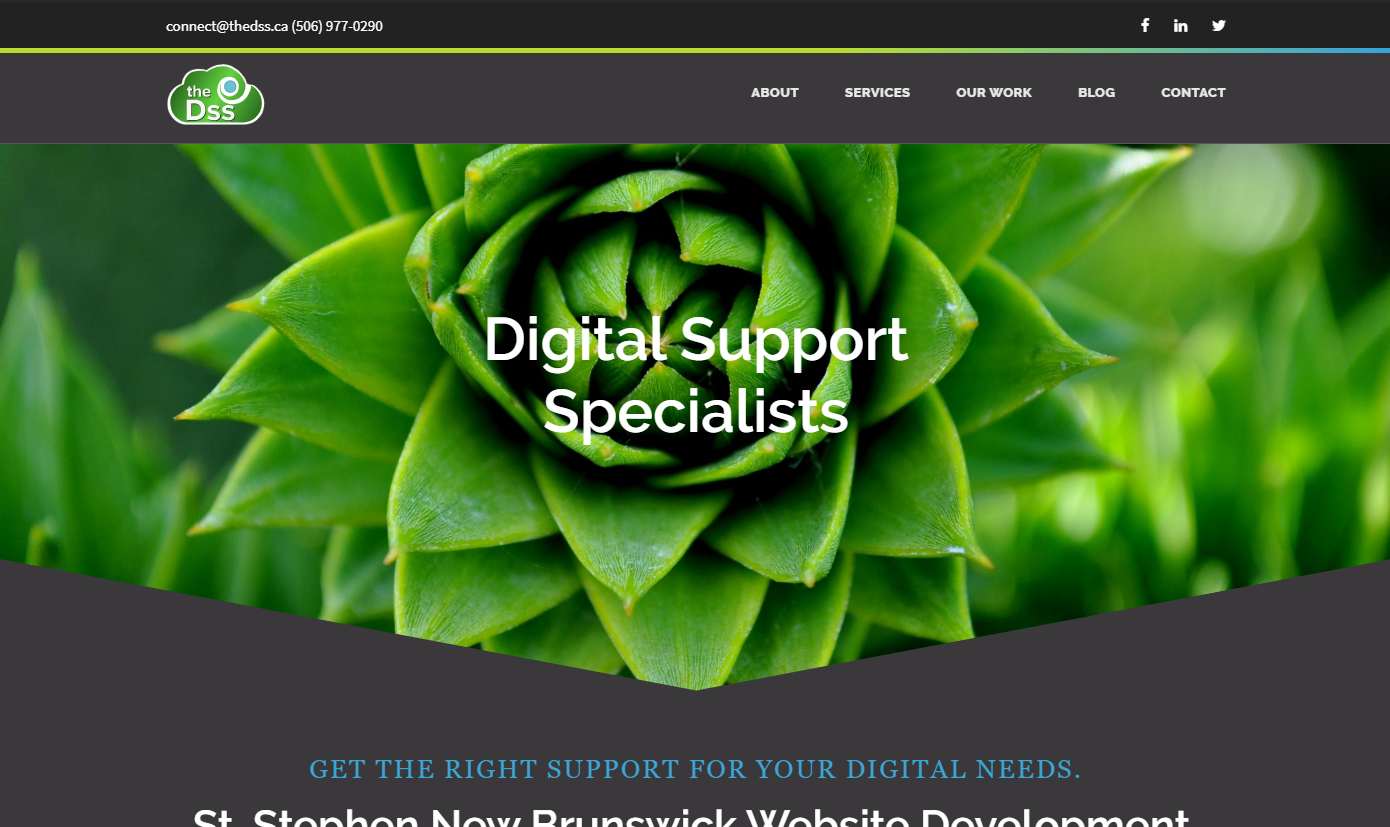The Digital Support Specialist