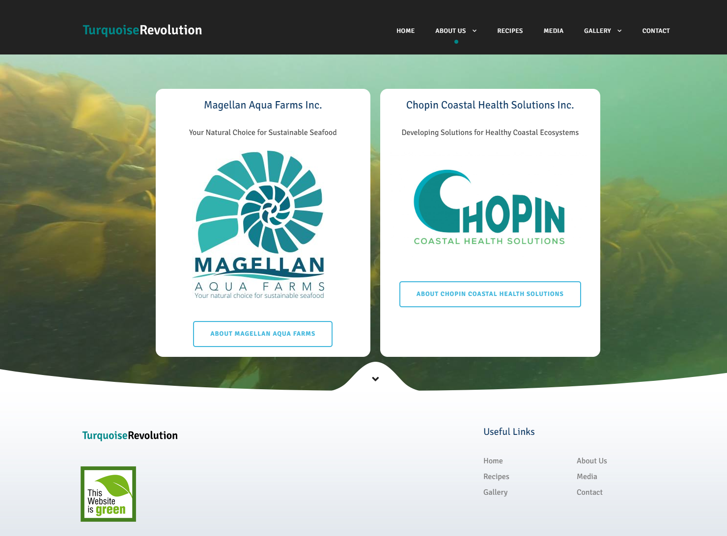 Turquoise Revolution about us page